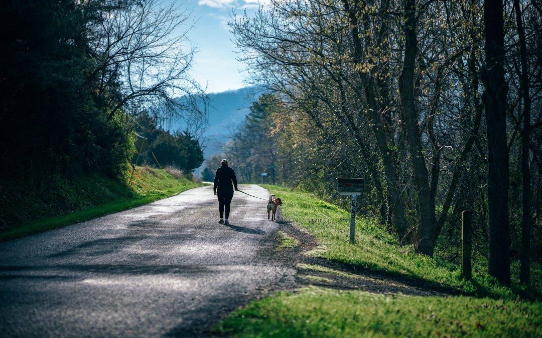 Vacaciones rurales en 2018